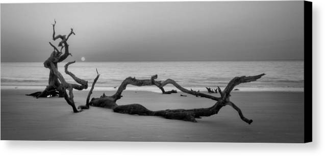 Driftwood Canvas Print featuring the photograph Beach Art Cropped In Black An White by Greg Mimbs