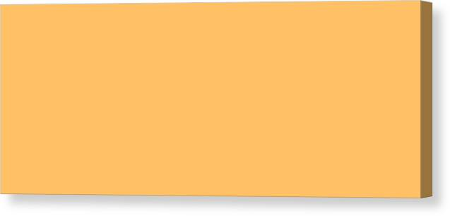 Abstract Canvas Print featuring the digital art C.1.255-192-102.5x2 by Gareth Lewis