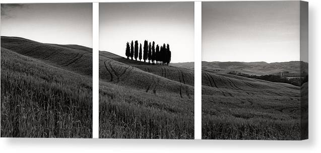 Tuscany Canvas Print featuring the photograph Tuscany Triptych by Michael Hudson