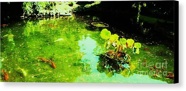 Pond Canvas Print featuring the photograph Pond 1 by Esther Rowden