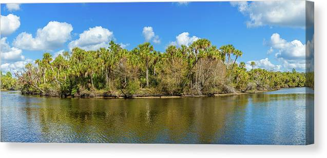 Photography Canvas Print featuring the photograph Myakka River From Jelks Preserve by Panoramic Images