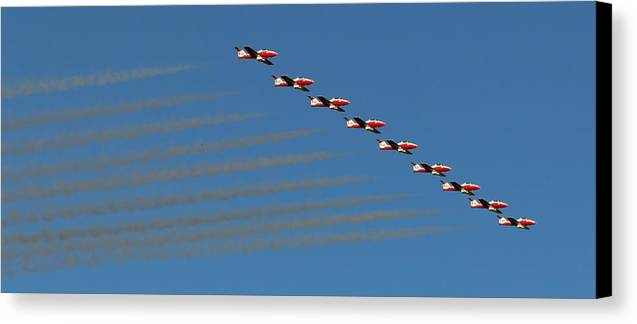 070412 Canvas Print featuring the photograph Snowbirds by Wayne Vedvig