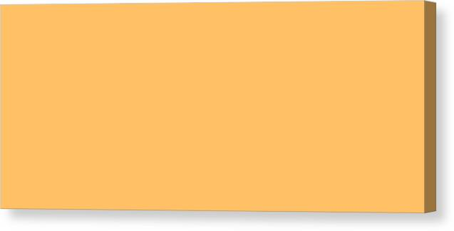 Abstract Canvas Print featuring the digital art C.1.255-192-102.7x3 by Gareth Lewis