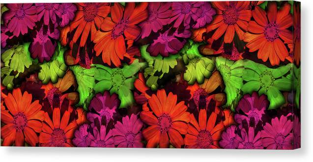 Nature Canvas Print featuring the digital art Flower Path by Efrat Fass