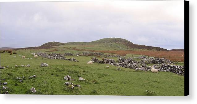 Landscape Canvas Print featuring the photograph Road To Waternish Point by Dan Andersson