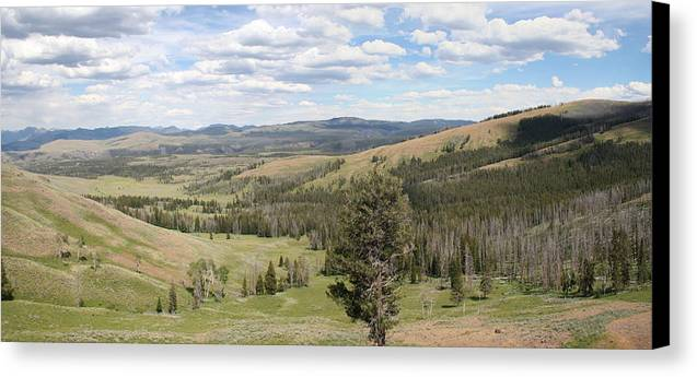 Vista Canvas Print featuring the photograph Yellowsotne Panorama by Gregory Jeffries