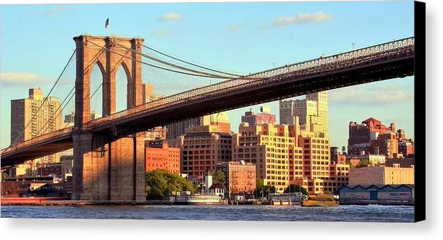 Brooklyn Canvas Print featuring the photograph Brooklyn by Mitch Cat