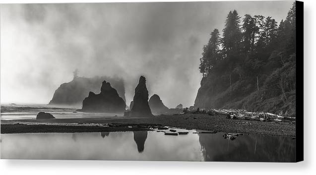 Art Canvas Print featuring the photograph Fog In Force by Jon Glaser