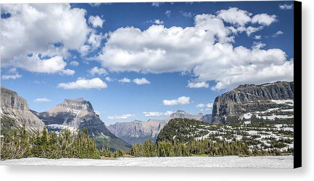 Art Canvas Print featuring the photograph Summer Snow by Jon Glaser