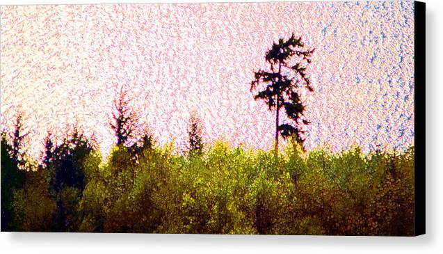 Landscape Canvas Print featuring the photograph From The Hill 2 Ae 2 by Lyle Crump