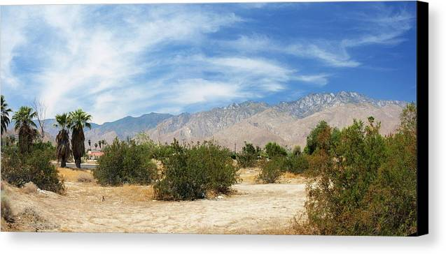 Desert Canvas Print featuring the photograph Mojave Pan 2 by Chuck Shafer