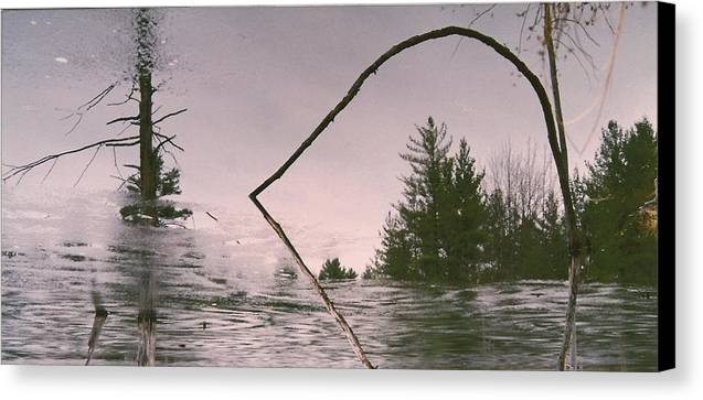 Nature Scene Canvas Print featuring the photograph Natures Mirror by Paul Shier