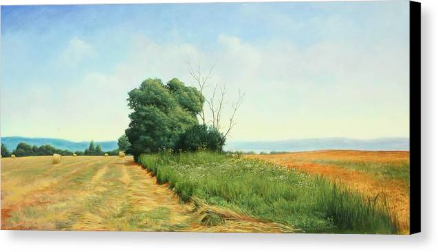 Landscape Canvas Print featuring the painting Skaneatles Field by Stephen Bluto