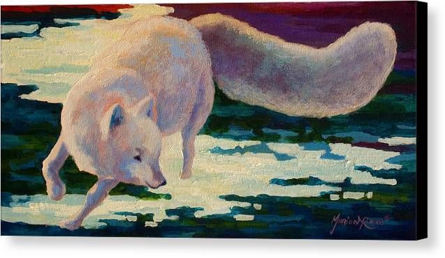 Arctic Canvas Print featuring the painting Arctic Fox by Marion Rose