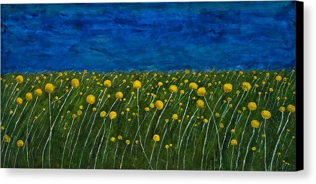 Billybuttons Canvas Print featuring the painting Craspedias by Julia Collard