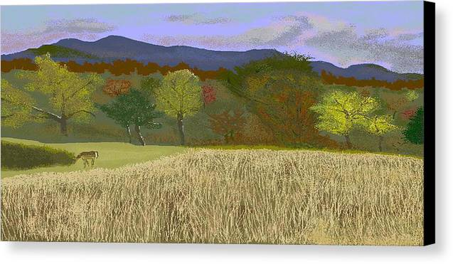 Hills Canvas Print featuring the digital art Hill Country Colors by Carole Boyd