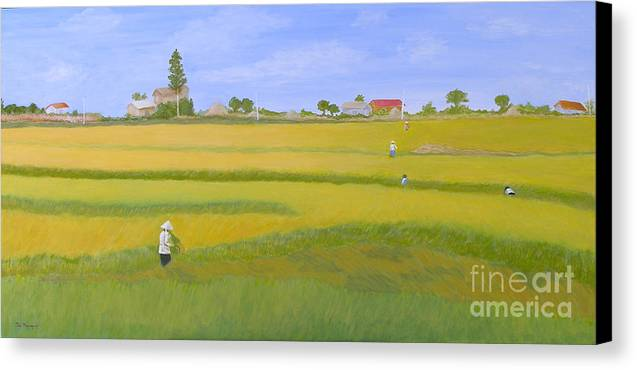 Scenic Canvas Print featuring the painting Rice Field In Northern Vietnam by Thi Nguyen