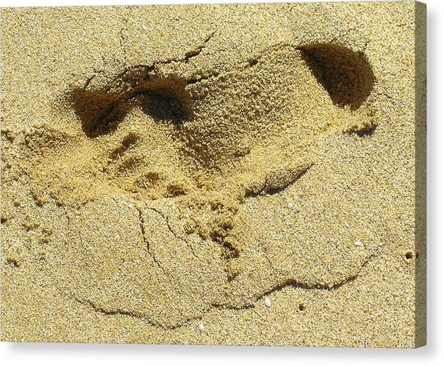 Quotes Greeting Cards Canvas Print featuring the photograph Sand Between Your Toes by James Temple