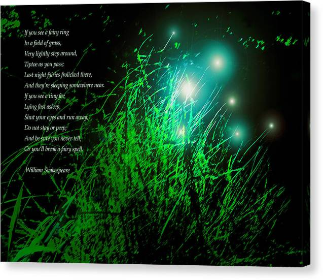 Fairy Grass Canvas Print featuring the photograph Fairy Grass by James Temple