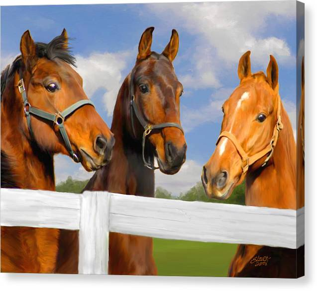 Saddlebred Canvas Print featuring the painting Awaiting Home by Elzire S