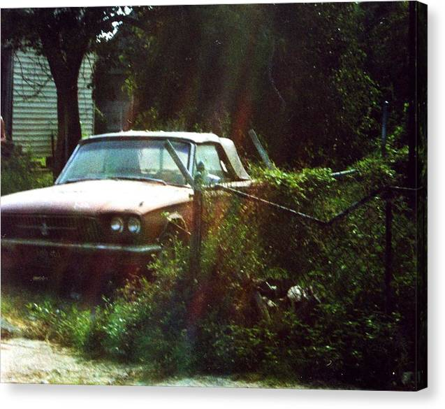 Car Canvas Print featuring the photograph Stuck in Desire by Jennifer Ott