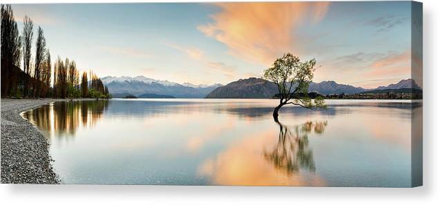 Tranquility Canvas Print featuring the photograph Wanaka - Lone Tree Sunrise At Lake by Kathryn Diehm