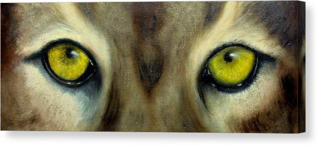 Eyes Canvas Print featuring the painting Who's watching who...Florida Panther by Darlene Green