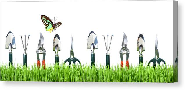 Grass Canvas Print featuring the photograph Garden Tools by Liliboas