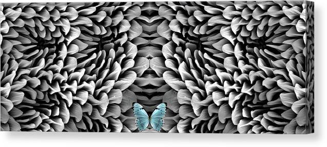 Microscope Canvas Print featuring the photograph Blue Butterfly And Antenna by Sheri Neva