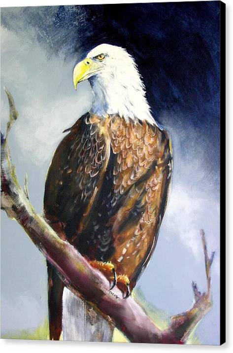 Wildlife Canvas Print featuring the painting Bald Eagle by Paul Miller