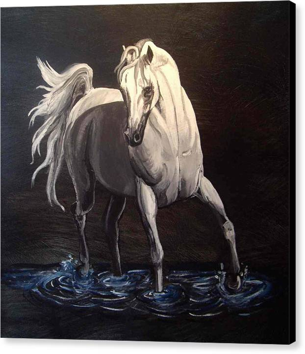 Equine Canvas Print featuring the painting Midnight Prance by Glenda Smith