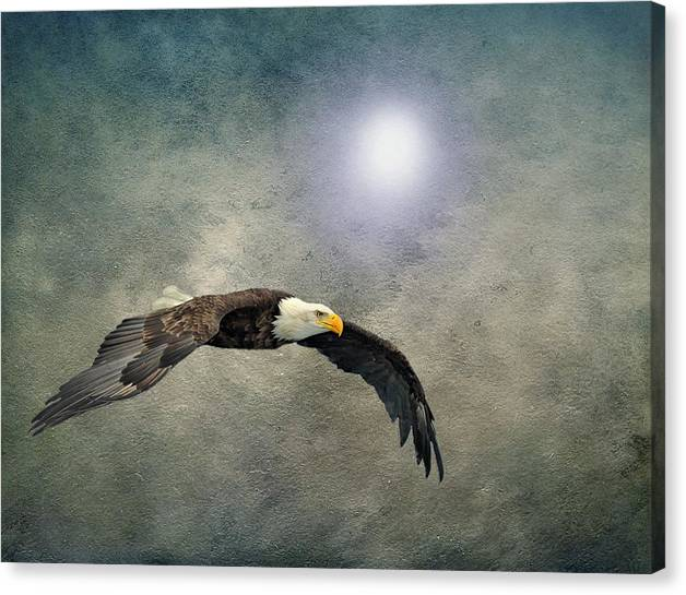 Limited Time Promotion: Bald Eagle Textured Art Stretched Canvas Print