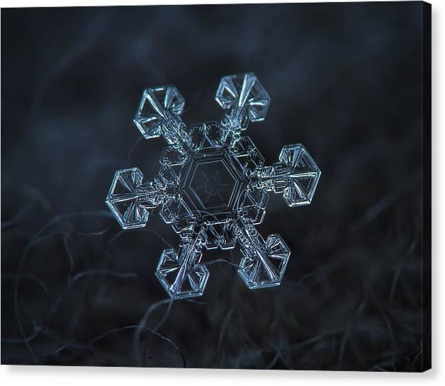 Limited Time Promotion: Snowflake Photo - Ice Crown Stretched Canvas Print