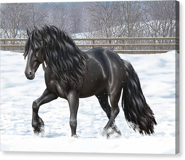 Limited Time Promotion: Black Friesian Horse In Snow Stretched Canvas Print