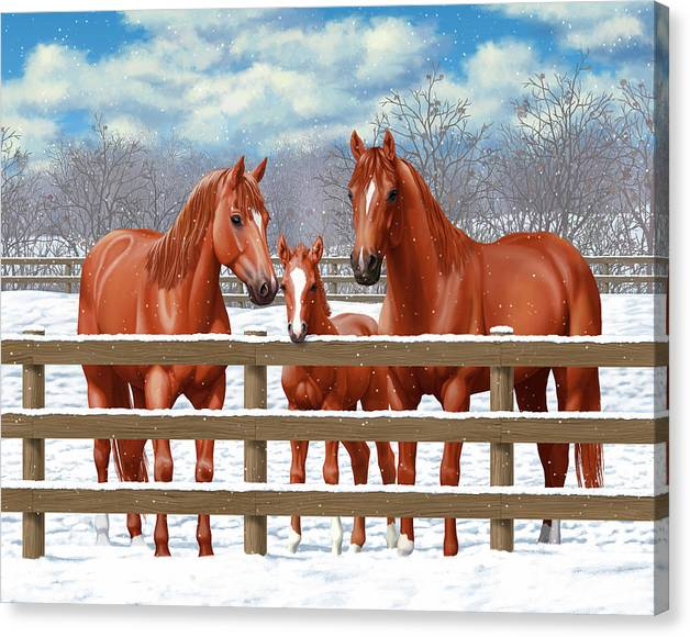 Limited Time Promotion: Red Sorrel Quarter Horses In Snow Stretched Canvas Print