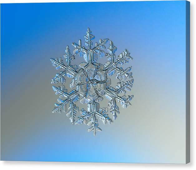 Limited Time Promotion: Snowflake Photo - Gardener