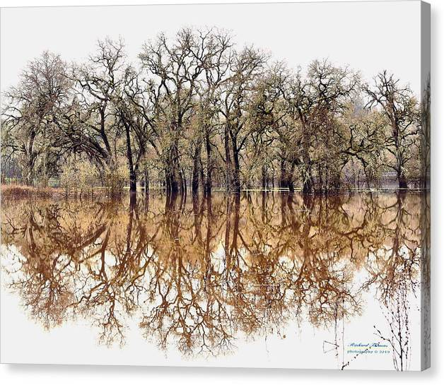 Limited Time Promotion: Flooded Laguna De Santa Rosa Stretched Canvas Print by Richard Thomas