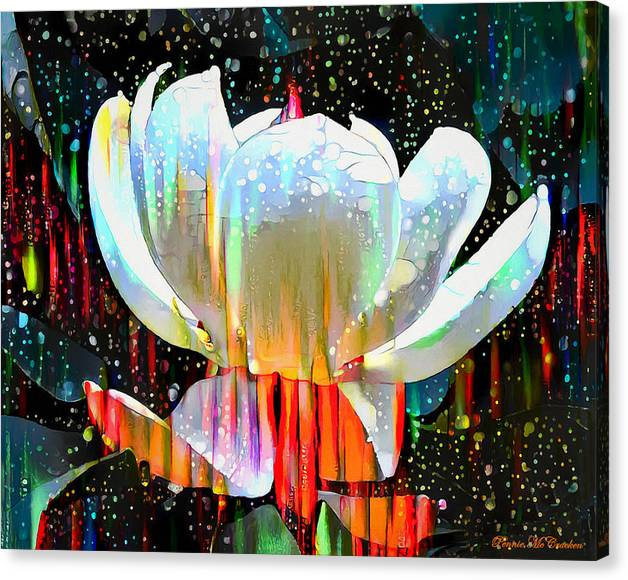 Limited Time Promotion: Water Lily Stretched Canvas Print by Pennie McCracken