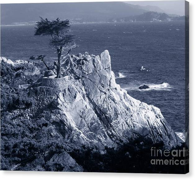 Limited Time Promotion: Midway Point Monochrome Blue Stretched Canvas Print by James B Toy