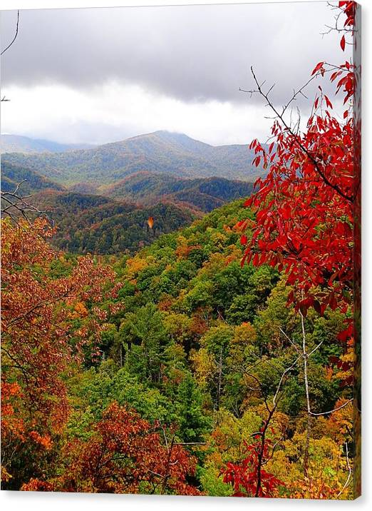 Limited Time Promotion: Smoky Mountains In The Fall Stretched Canvas Print