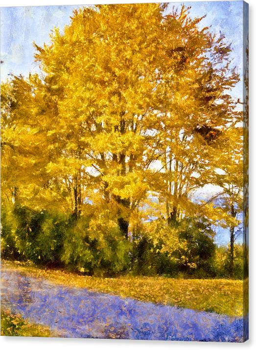 Limited Time Promotion: Golden Tree Stretched Canvas Print