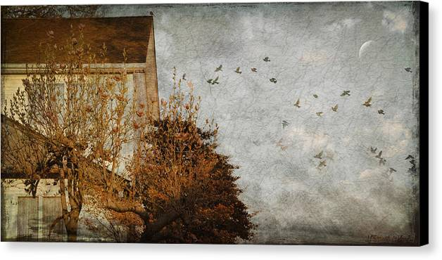 Birds Canvas Print featuring the photograph Evening by Inesa Kayuta