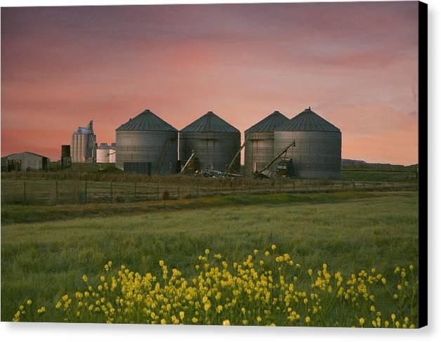 Landscape Canvas Print featuring the photograph Silo Set by Richard Hamilton