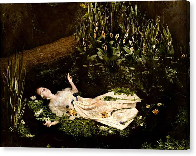 Ophelia Canvas Print featuring the photograph Ophelia by Jacquie Thuemler