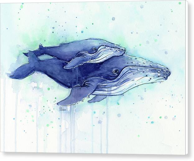 Humpback Whales Mom and Baby Watercolor Painting - Facing Right by Olga Shvartsur