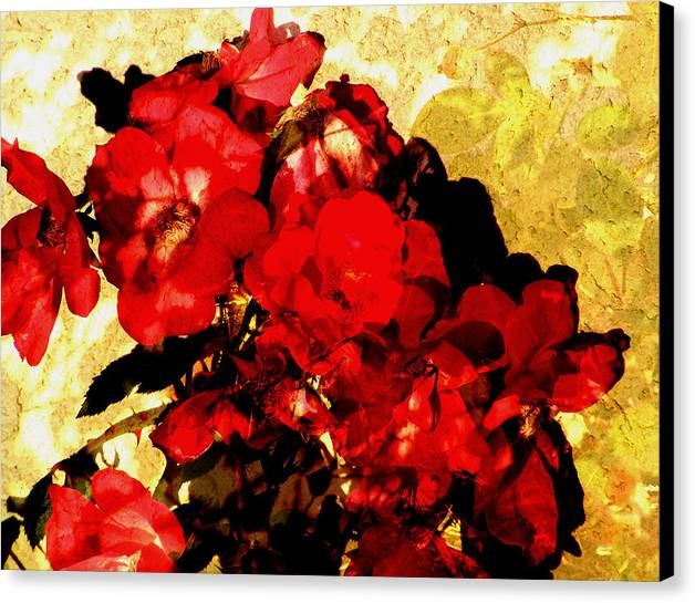 Flowers Canvas Print featuring the digital art Roses by Sally Engdahl