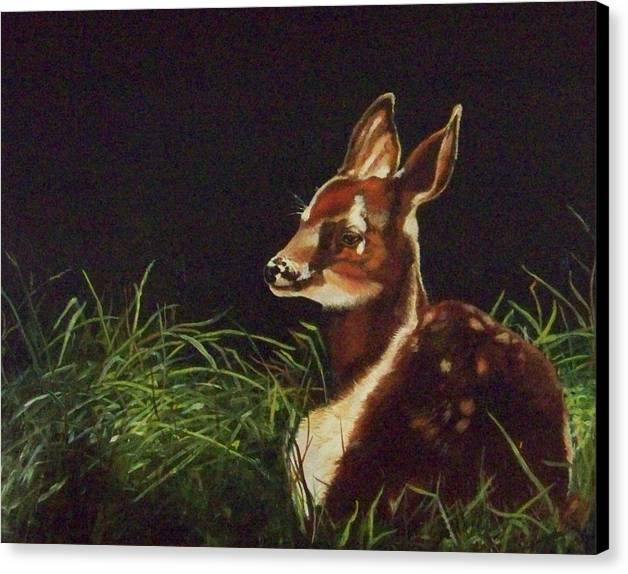Deer Canvas Print featuring the painting Waiting For Mom by Audrie Sumner