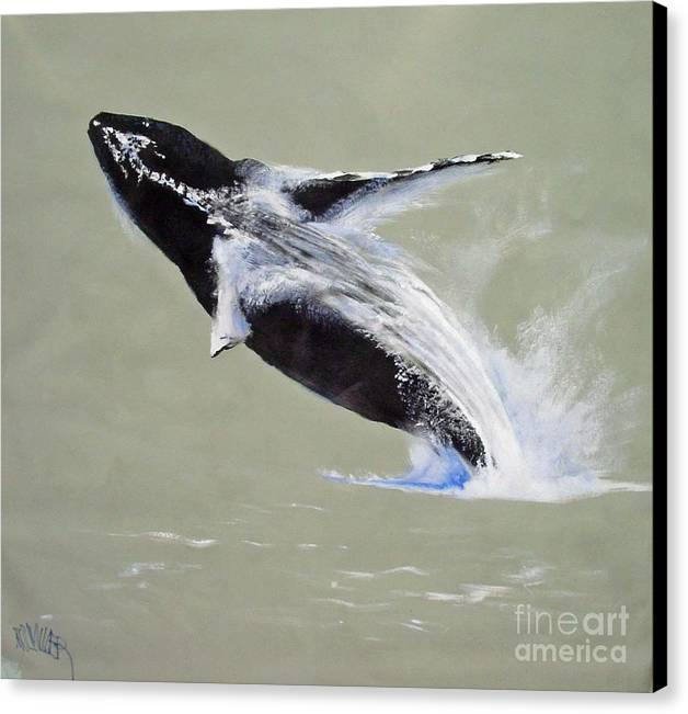 Kihei Canvas Print featuring the painting Humpback Off Kihei Maui by Paul Miller