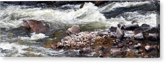 River Canvas Print featuring the photograph Poudre River 5 by Linda Benoit