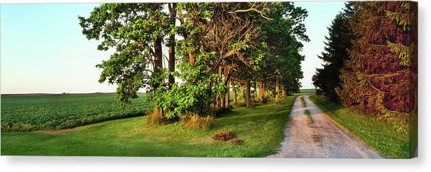 Photography Canvas Print featuring the photograph Dirt Road Passing Through Farm by Panoramic Images